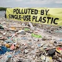 Бесплатных одноразовых пластиковых пакетов скоро не будет