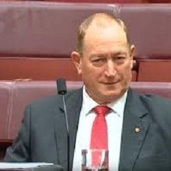 Сенат Австралии осудил депутата