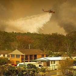 Лесные пожары продолжаются