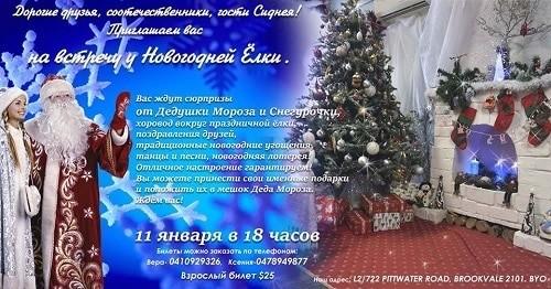 Встреча у Новогодней Ёлки